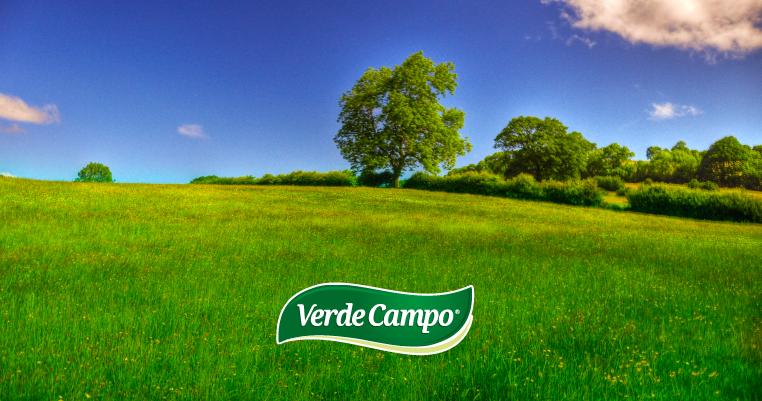verde-campo
